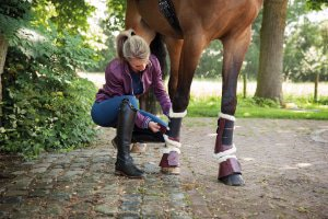Verwonderend Horse rugs and much more! | MHS Equestrian JL-83