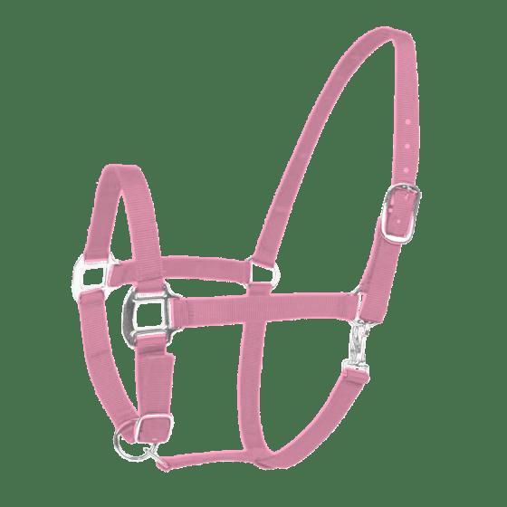 Hofman Halter Excellent pink