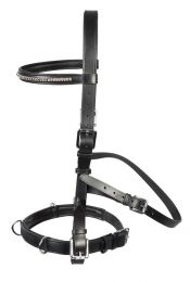 PFIFF multi-purpose bridle