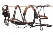 Ideal Eurotech Harness Shetland