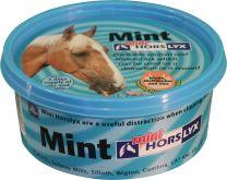 Horslyx Mint 650 Grams