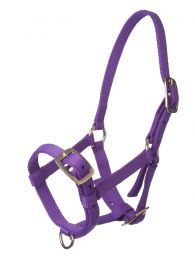 Harrys Horse Foal Halter Top Purple