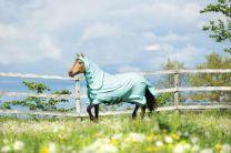 Horseware Rambo Pony Sweetitch Hoody