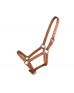 "QHP Leather Headcollar ""Chico"""
