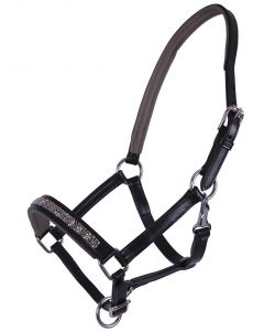 QHP Leather Halter Foal Learn Lupine
