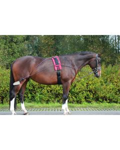 QHP Lunging aid reins