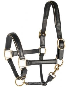 Harry's Horse Halter leather, black with to to trim