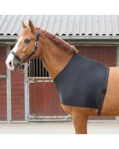 Harry's Horse Chest protector lycra