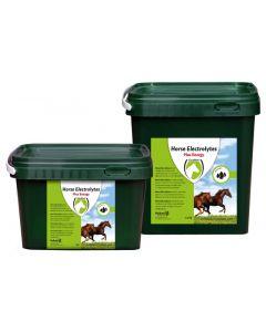 Hofman Horse Electrolytes Powder 1kg