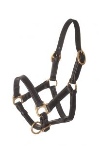 HB Leather Halter Extra