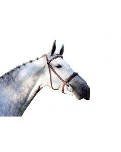 QHP Nose veil