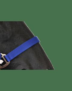 Hofman Halter Classic blue