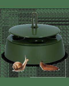Vplast Snail trap