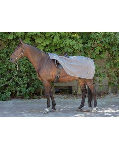 Harry's Horse Teddy fleece exercise blanket