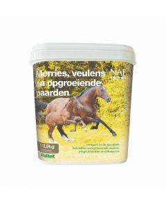 NAF Mares, foals and growing horses