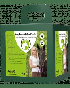 Excellent Garlic Allicin Powder EU (Garlic powder)