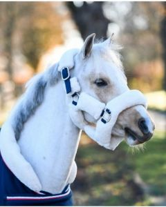 HB Showtime harry and hector fluffy halter little sizes