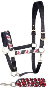 Harry's Horse Headcollar and lead Friesian