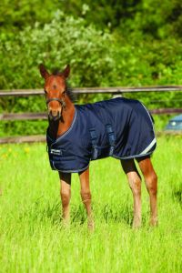 Horseware Amigo Foal Rug Medium 200 g