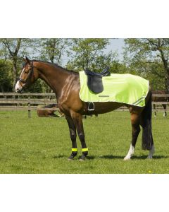 QHP Reflection exercise rug