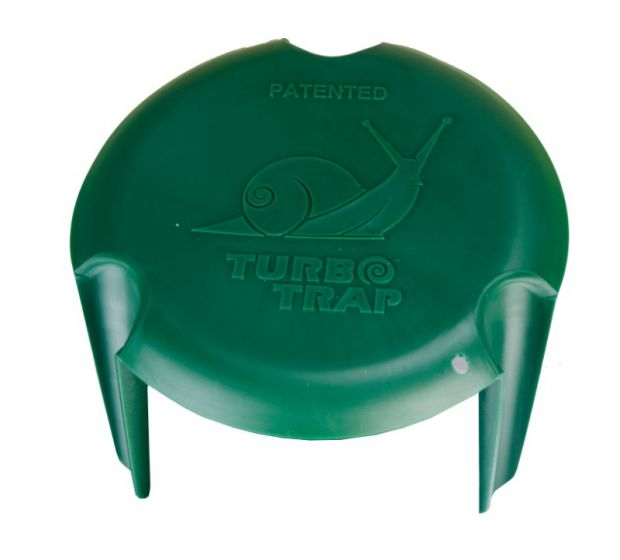 "Hofman Snail trap on bottle / pot ""TurboTrap"""