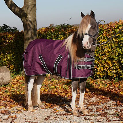 Winter rugs to 165cm (shetland pony)